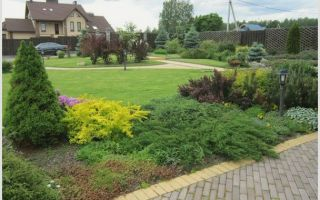 Ландшафт, озеленение и благоустройство: комплекс профессиональных услуг